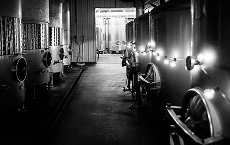 Cellar Room Tasting: Finger Lakes Wine Tours at Lakewood Vineyards