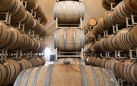 Guided Tour & Tasting: Finger Lakes Wine Tours at Lakewood Vineyards